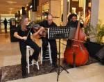 Cabo wedding musician